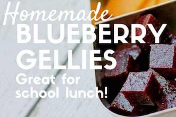 Homemade Blueberry Gellies