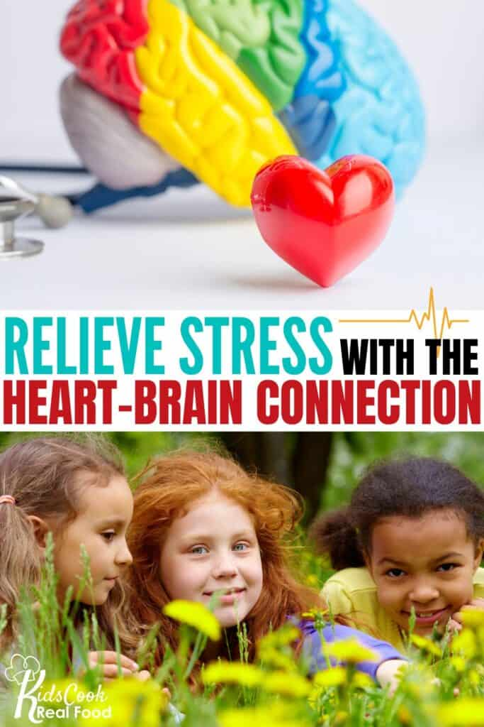 Relieve stress with the heart-brain connection